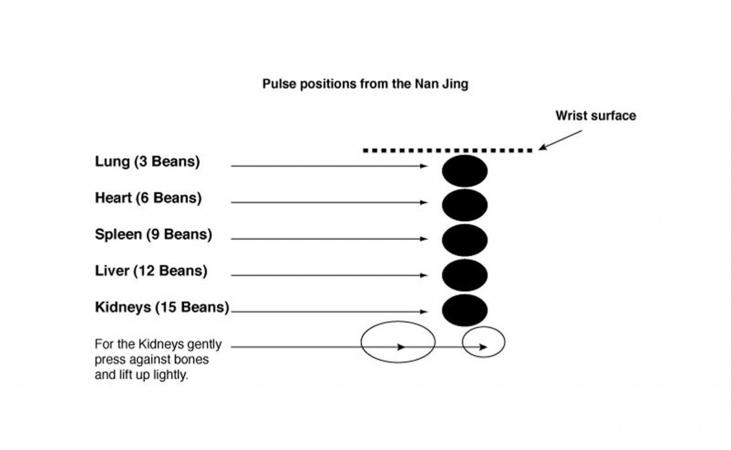 Figure 3: Nan Jing Pulse Diagram (2013). © Michelle Lewis-­King